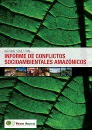 Primer Informe Semestral - Vigilante Amazónico