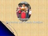 6,69 MB - Care Perú