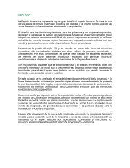 PROLOGO La Región Amazónica representa hoy un gran ... - OTCA
