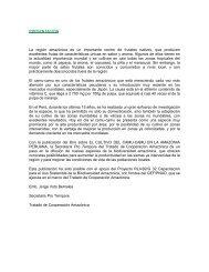 PRESENTACION La región amazónica es un importante ... - OTCA