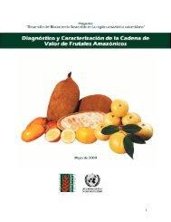 Diagnóstico y Caractrización de la Cadena de Valor de Frutales ...