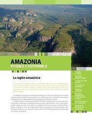 La región amazónica - Cepal