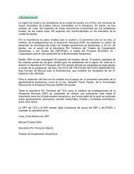 PRESENTACIÓN La región de Loreto y los alrededores de ... - OTCA