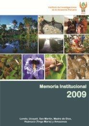 memoria completa año 2009 - Instituto de Investigaciones de la ...