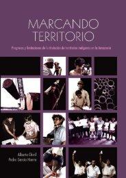 Marcando Territorio:Progresos y limitaciones de la ... - Justicia Viva