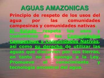 reglamento de la ley de recursos hidricos amazonicos - Autoridad ...