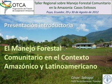 El Manejo Forestal Comunitario en el Contexto Amazónico y ...