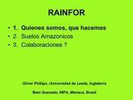 Proyecto RAINFOR, presentación y sinergías con nuestro proyecto.