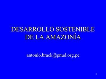 desarrollo economico en la region amazonica - Ilzro Raps Peru