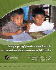 Enfoque pedagógico del aula unidocente en las ... - Flacso Andes