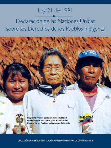 Ley21-1991-Declaracion-Onu-derechos-pueblos-indigenas