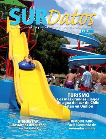 Sur Datos enero 2013 - Ediciones Especiales El Sur