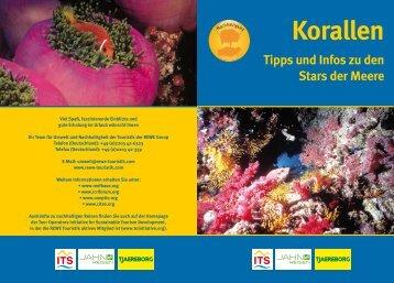 """Download der Broschüre """"Korallen - Tipps und Infos ... - REWE Group"""