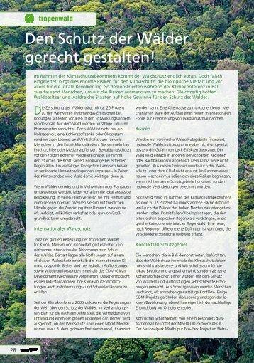 Den Schutz der Wälder gerecht gestalten! - Robin Wood
