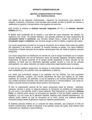1 SISTEMA CARDIOVASCULAR: ANATOMÍA ... - Infermera Virtual