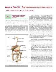 Anexo Anatomofisiología del sistema digestivo.indd - Grupo CTO