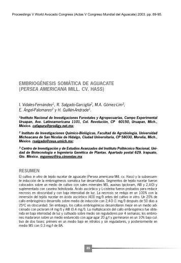 Texto Completo - Avocadosource.com