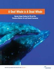 A Deaf Whale is A Dead Whale
