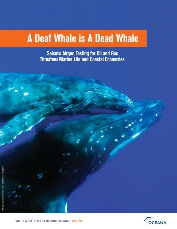 A Deaf Whale is A Dead Whale