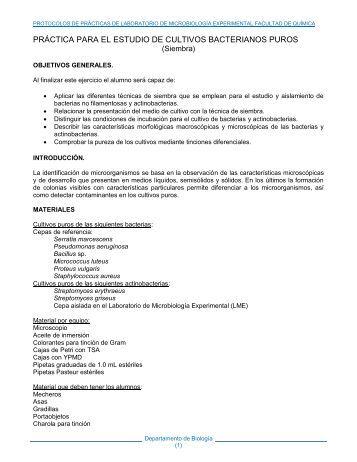 práctica para el estudio de cultivos bacterianos puros - UNAM
