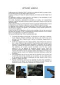 Catedral definitivo - Archidiócesis de Burgos - Page 3