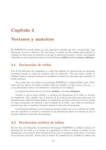 Apuntes FORTRAN - Capítulo 4 (pdf) - Personal.us.es