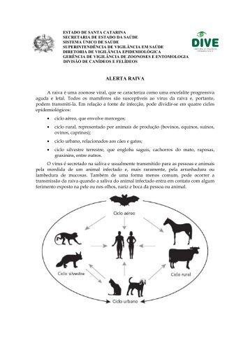 Leia mais... - Diretoria de Vigilância Epidemiológica