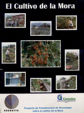 Cartilla ilustrada del cultivo de mora - Agronet