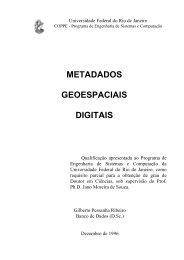 metadados geoespaciais digitais - Pós-graduação em Engenharia ...