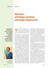 Biomasa: estrategia nacional, estrategia empresarial
