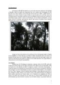 Informe global 2007 - Grupo EspeleoKandil - Page 7