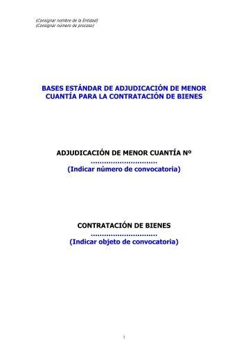 Contratacion de Bienes por AMC