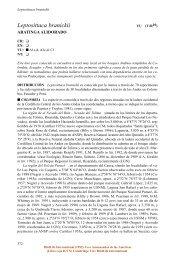 Leptosittaca branickii - BirdLife International
