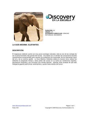 LA GUÍA MÁXIMA: ELEFANTES - Discovery en la Escuela