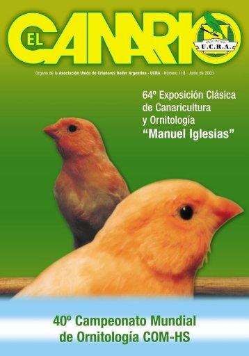canarios - Aves Magacin