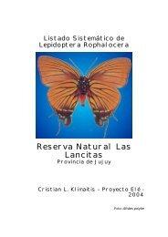 Mariposas Reserva Natural Las Lancitas