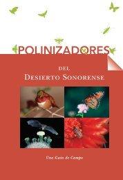 POLINIZADORES - denix