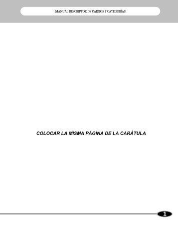 Manual Descriptor de Cargos y Categorias. - Alcaldía Municipal de ...
