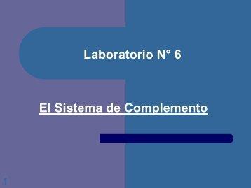 Laboratorio No. 6