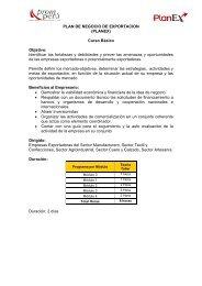 PLAN DE NEGOCIO DE EXPORTACION (PLANEX) Curso ... - Siicex