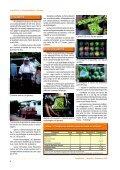Clique aqui para ver o texto completo - Ceinfo - Embrapa - Page 6