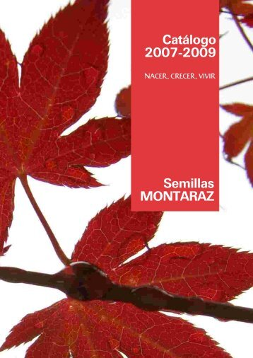 material forestal de reproducción - Semillas Montaraz