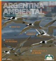 Revista Argentina Ambiental Nº 41 en pdf