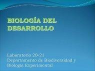 Diapositiva 1 - Departamento de Biodiversidad y Biología ...