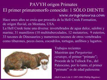 Presentación de PowerPoint - Aragosaurus