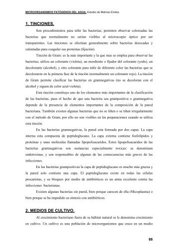 1. TINCIONES. 2. MEDIOS DE CULTIVO. - La Anunciata Ikerketa