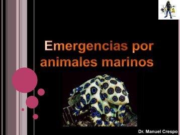Emergencias por animales marinos