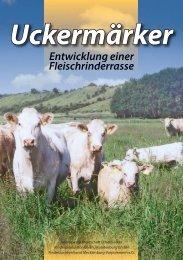 zum Download hier klicken - Rinderzucht Mecklenburg Vorpommern