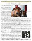 La novela picaresca en España - Diario Colatino - Page 6