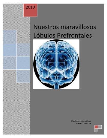 Nuestros maravillosos Lóbulos Prefrontales - Asociación Educar
